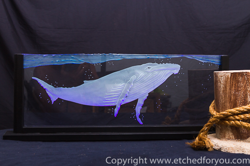 humpback whale carved glass panel