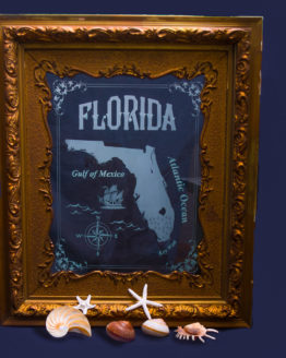 Vintage Florida map in carved glass with frame and LED lights and frame